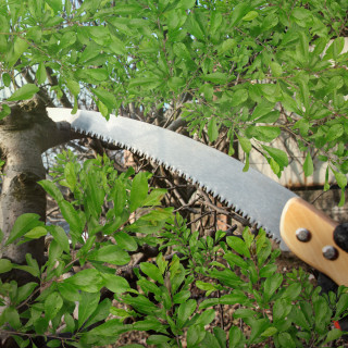 Garden saw for branches 35cm