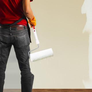 Paint roller Blanco 9