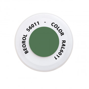 Spray paint green Reseda RAL6011