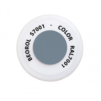 Spray paint gray Argento RAL7001